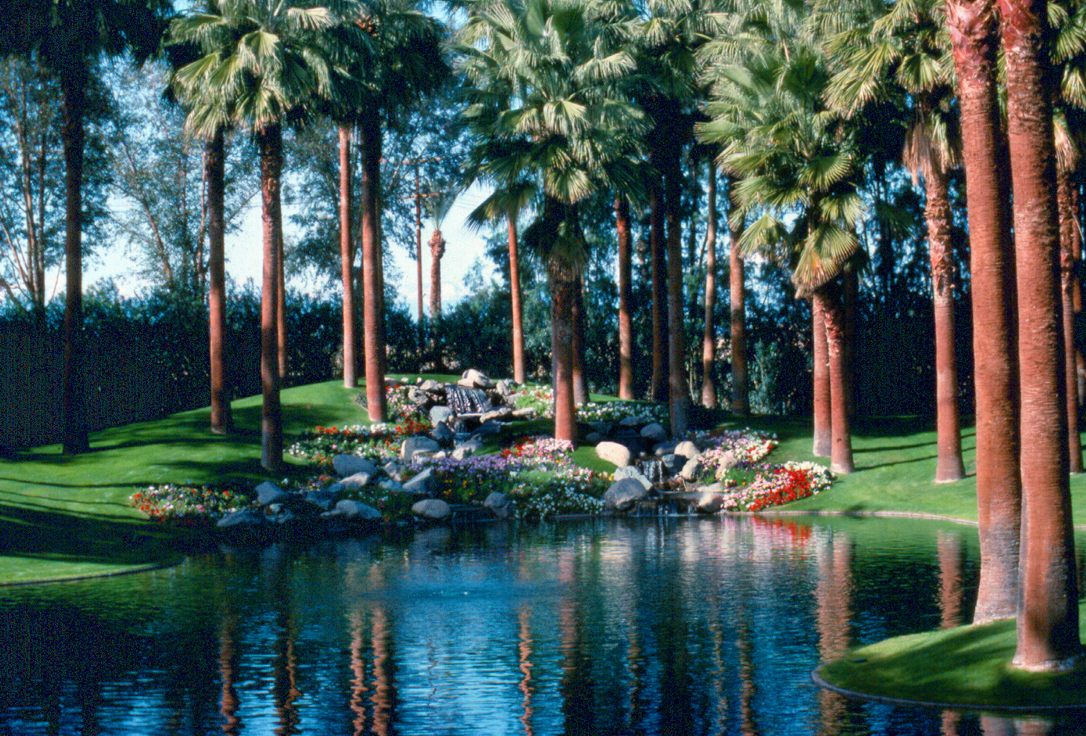 desert oasis estate waterscapes inc. Black Bedroom Furniture Sets. Home Design Ideas
